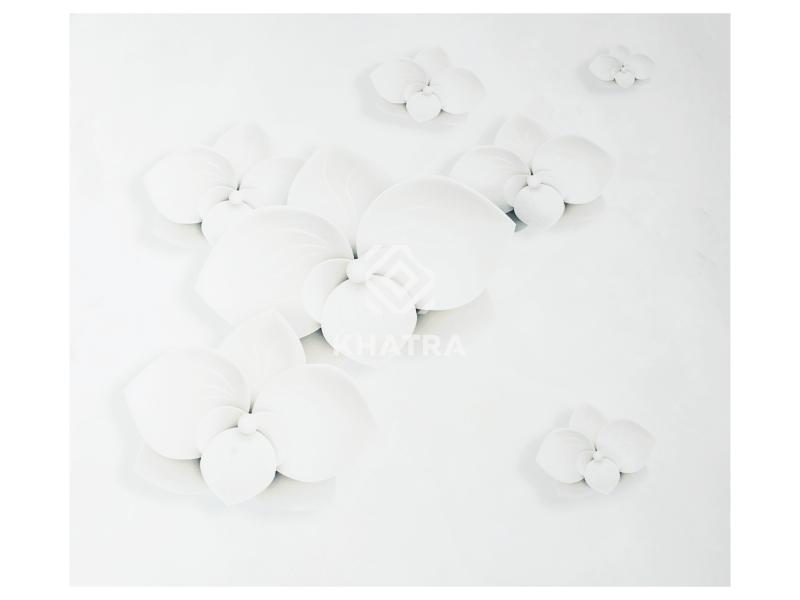 gạch hoa sứ lát nền 80x80