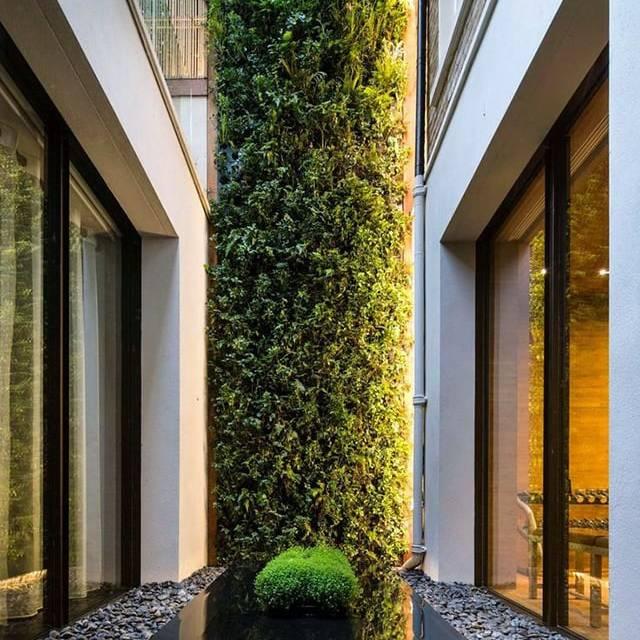 Vertical Garden kết hợp đá sỏi