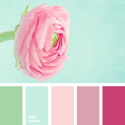 Color Palette of Mint Green