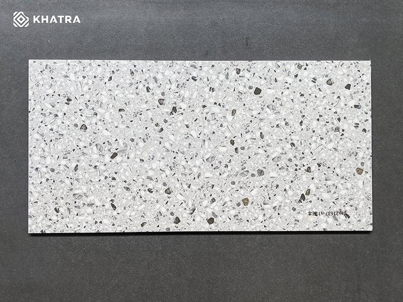 Gạch Terrazzo 300x600 TERA362